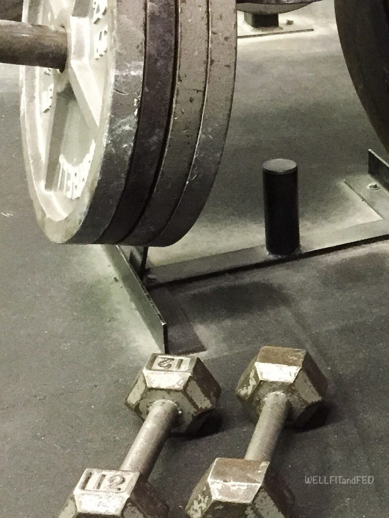 Thinking Of Joining A Gym? ~ Why Your Local, Old School Gym, Is A Better Choice WELLFITandFED